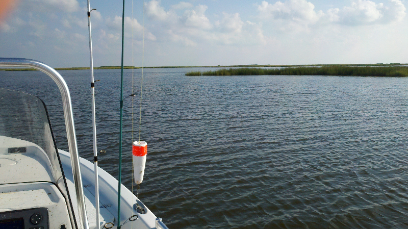 Gallery louisiana fishing charters for Louisiana lifetime fishing license