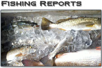 delacroix louisiana inshore fishing reports