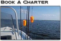 charter fishing louisiana