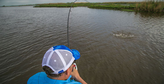 Louisiana Fishing Trip Rates | Charter Pricing